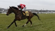 Coneygree heads the entrants at the Lexus Chase