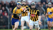 Clare or Kilkenny will be hurling in Division 1B next season