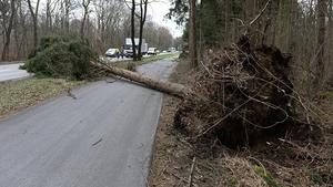 A tree lies on the road in southern Germany following the stormy weather