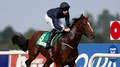 Derby favourite JFK set for Leopardstown outing