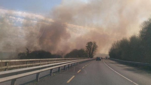 Reeds and bushes are seen on fire along the Tramore road in Waterford (Pic: Susan Hannon)