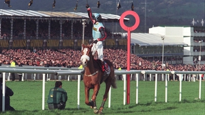 Tony McCoy celebrates completing a Champion Hurdle-Gold Cup double in 1997 as Mr Mulligan lands chasing's Blue Riband