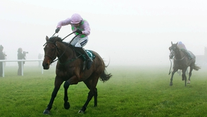Djakadam wins at Gowran under Ruby Walsh in January