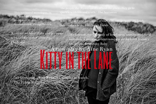 """Kitty In The Lane"" by Áine Ryan"