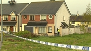 Shane Murphy died after attending a house party in Pallasgreen, Co Limerick