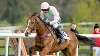 The BHP Insurances Irish Champion Hurdle previewed