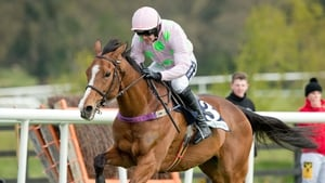 Faugheen could be back in action at Leopardstown before the end of the month