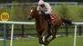 Annie Power could go to Punchestown