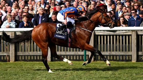 Gleneagles' pedigree Galileo-You'resothrilling (Storm Cat) provides mixed messages as to how he would handle a dirt surface