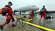 Members of the Dutch Urban Search and Rescue team get ready to leave with their tracker dogs for Nepal to help search for victims