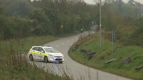 The baby was discovered near a business premises on Steelstown Road in Rathcoole