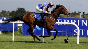 Will the Tabor colours be carried to victory in the feature?