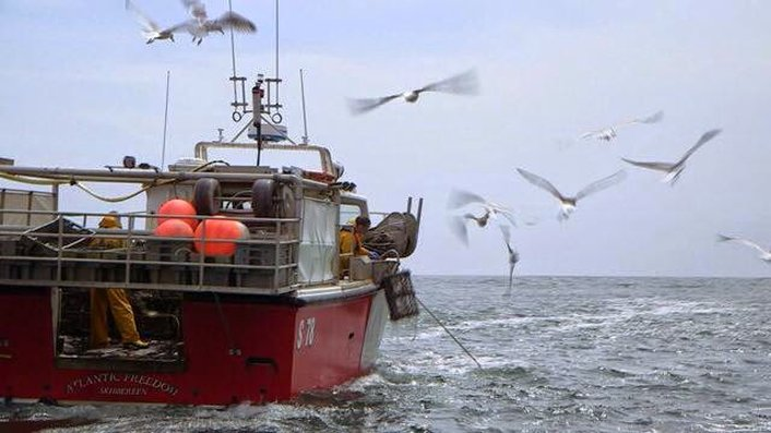 New fishing quotas agreed in Brussels