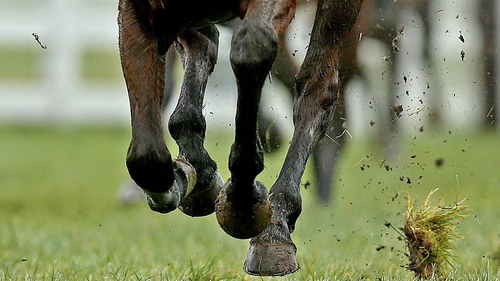 The study also found further improvements in racehorse speed are likely