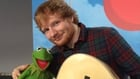 Ed 'the' Sheeran and Kermit the Frog