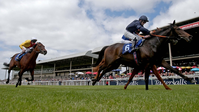Curvy holds off Canaletto in Gallinule Stakes