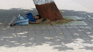 A man rests in the shelter of a tree in the city of Mumbai as the heatwave continues