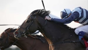 Western Hymn is a general 10-1 chance for the Prince of Wales's Stakes at Royal Ascot