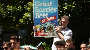 Greenpeace says the reef is in danger
