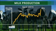 Six One News Web: Surge in Irish milk production following abolition of EU milk quotas