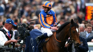 The David Wachman-trained runner bagged the 1000 Guineas at Newmarket earlier this month