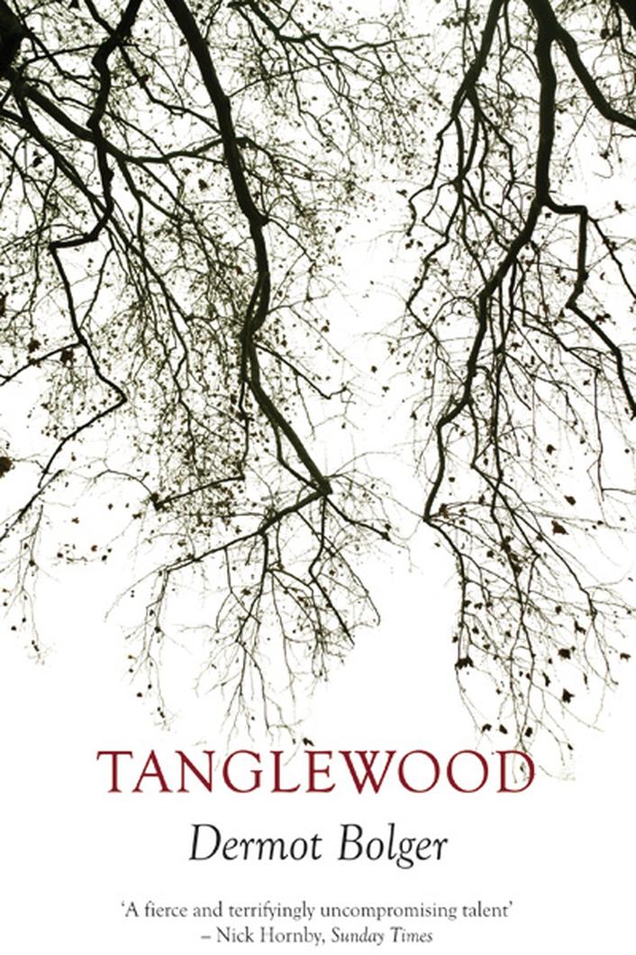 """Tanglewood"" by Dermot Bolger"