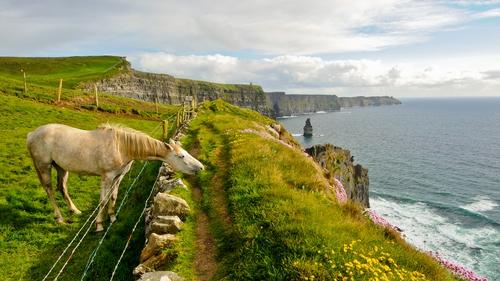 Chinese visitors enjoy the Irish landscape
