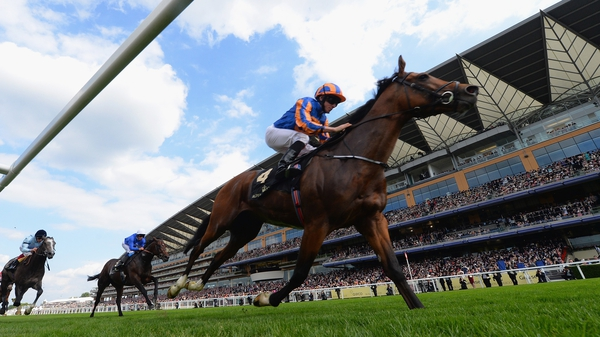 Gleneagles is a top-price 9-4 for the QEII