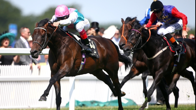 Time tested in York Stakes victory