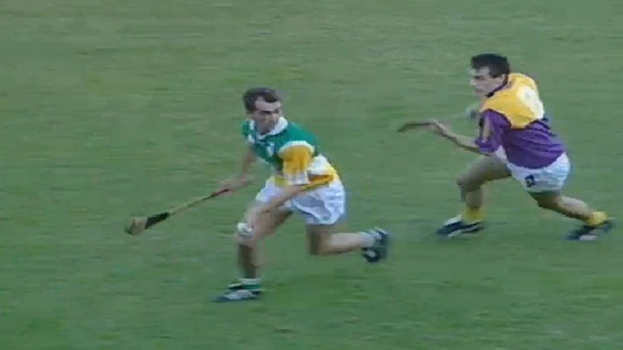 Offaly v Wexford 1995