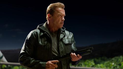 Schwarzenegger: back for more
