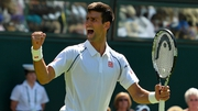 Novak Djokovic did enough to advance