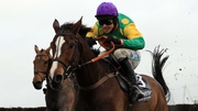 Kauto Star in action in the 2007 Betfair Chase