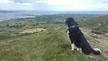 Caitlín Ní Mhuircheartaigh,Ben Ó Loingse, Cathy Uí Chorduibh, Beitsí Ní Shuibhne, Micheál Ó Ceallacháin, Mícheál Ó Sé agus Áine Uí Bheoláin.