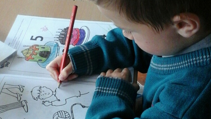 Calls for greater funding for special needs assistants