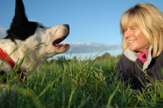 Ask the Specialist - Animal Behaviour