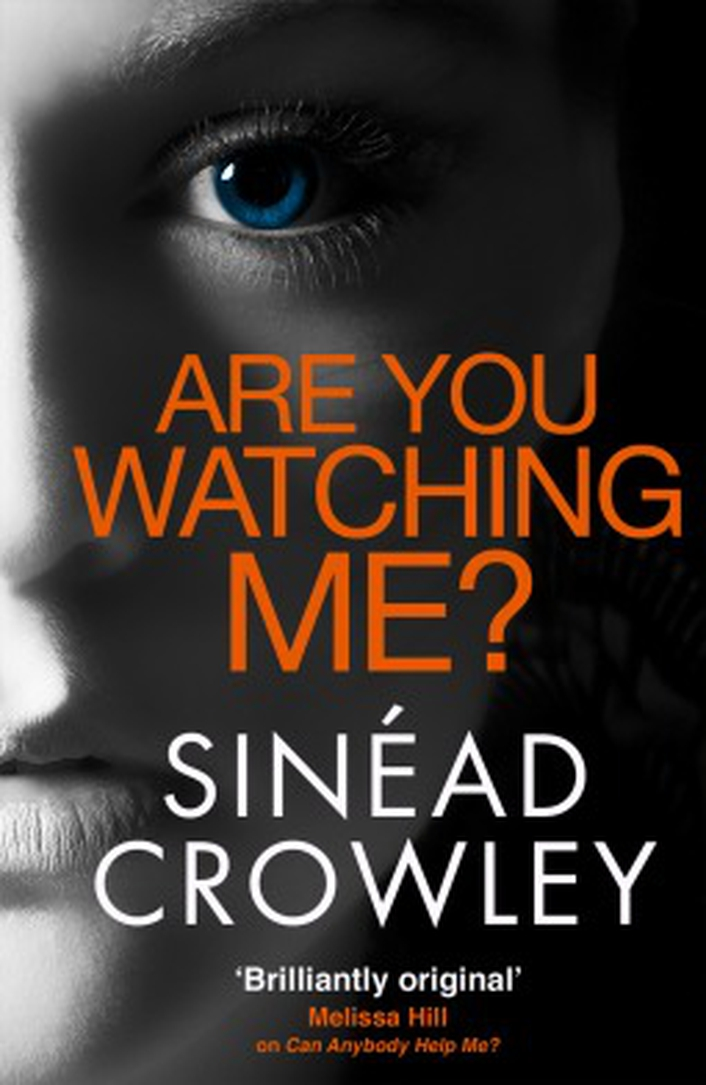 """Are You Watching Me?"" by Sinead Crowley"