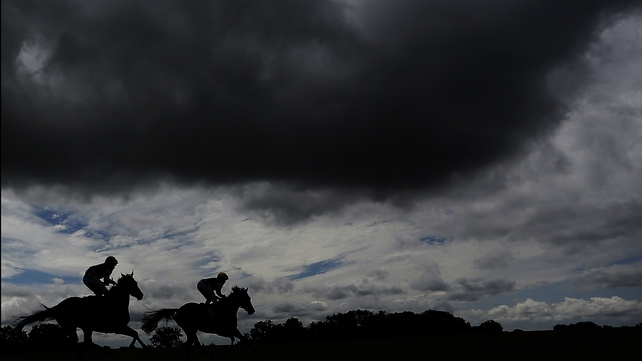 Limerick card on Wednesday called off