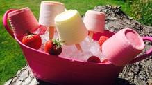Summer Fruit and Yogurt Ice Pops