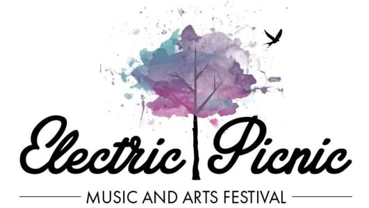 Artist-in-Residence programme at Electric Picnic