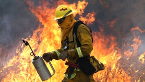 A firefighter moves away from a tall flame as he uses a drip torch to burn dry grass during a backfire operation to head off the Rocky Fire