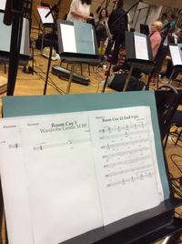 Another Score for the RTÉ Concert Orchestra