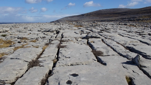 'Winterage' farming methods essential to preserving the unique Burren landscape