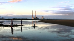 Sandymount Strand is among five Dublin beaches that failed to make the grade
