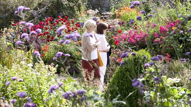 Like Gardens? You'll love this wee gem