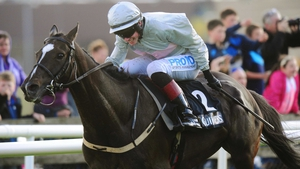 Clondaw Warrior set for ambitious tilt Down Under
