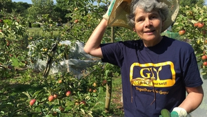 Ursula Lewis - a happy member of Grow It Yourself (GIY) Sandymount