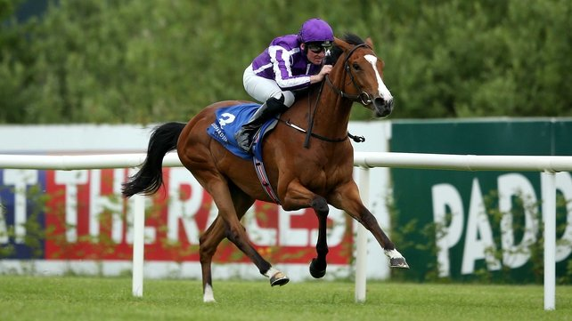 Minding was a comprehensive winner of a Leopardstown maiden on her second start