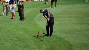 Tiger Woods shares the lead at the Wyndham Championship