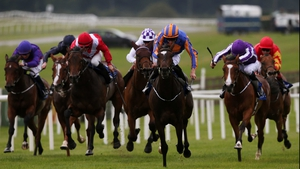 Ballydoyle looks likely to be a short-priced favourite for the Moyglare Stud Stakes
